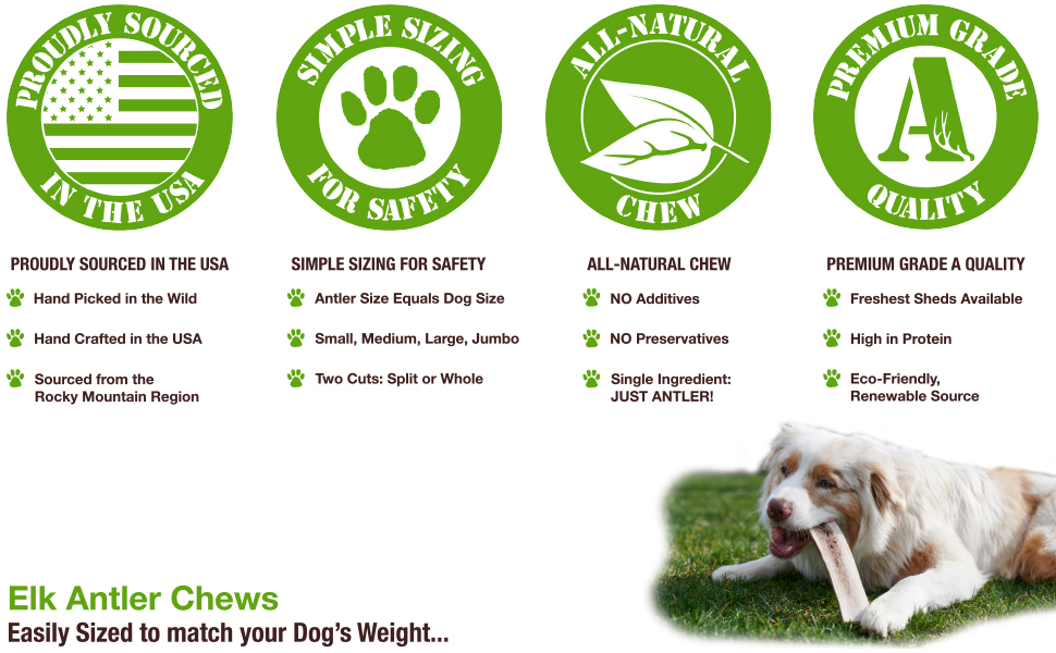 Buck Bone Organics, Elk Antlers, Natural Dog Chews, Dog Treats, Dog Chews, Elk Bones for Dogs