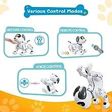 Various Control Modes