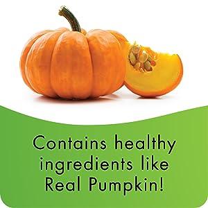 low calorie, digestive aid, digestive support, high fiber, training treat, pumpkin biscuit bone