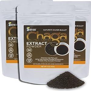 sayan chaga mushroom powder healthy antioxident
