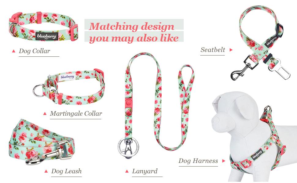 collar leash harness set