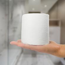 family room bath bathroom toilet paper toilettries