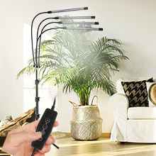 plant light with stand