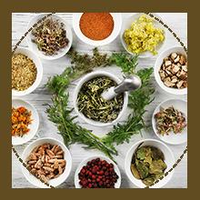 Ayurvedic shampoo, Neem, Bhringraj, Triphala, Shikakai, Ayurvedic herbs, herbal shampoo