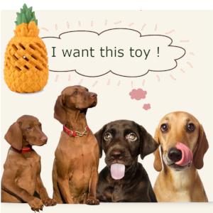Pet-Fun Dog Chew Toy Large Pineapple