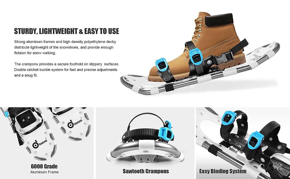 Ski Snowshoes