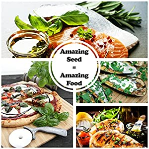 amazing seed equals amazing food sustainable seed company culinary indoor herb garden starter kit