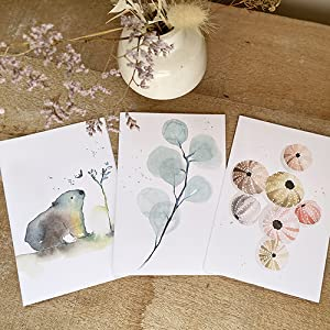 watercolour cards, greeting cards, sea urchins, botanical, wildlife animals cards