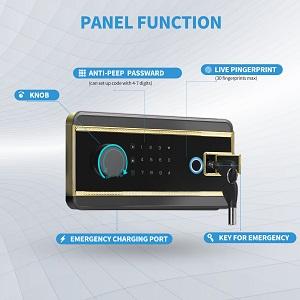 panel function