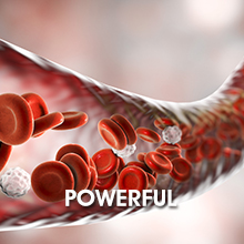 powerful oxygen delivery red blood