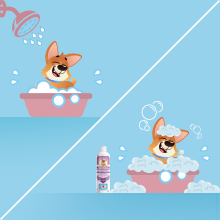 Shower and rinse your dog