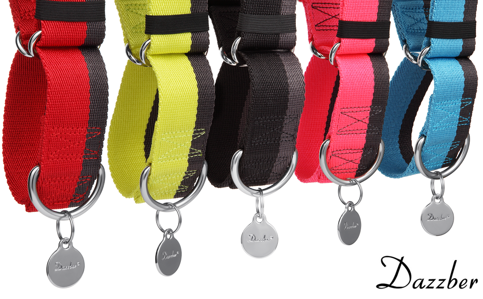 4cm Width Extra Strong Nylon Dog Collar Extra Grande, Rojo /& Gris No Pull Heavy Duty Dog Collar with 2-Color Stripe for Medium to Xlarge Dogs Dazzber Martingale Collar