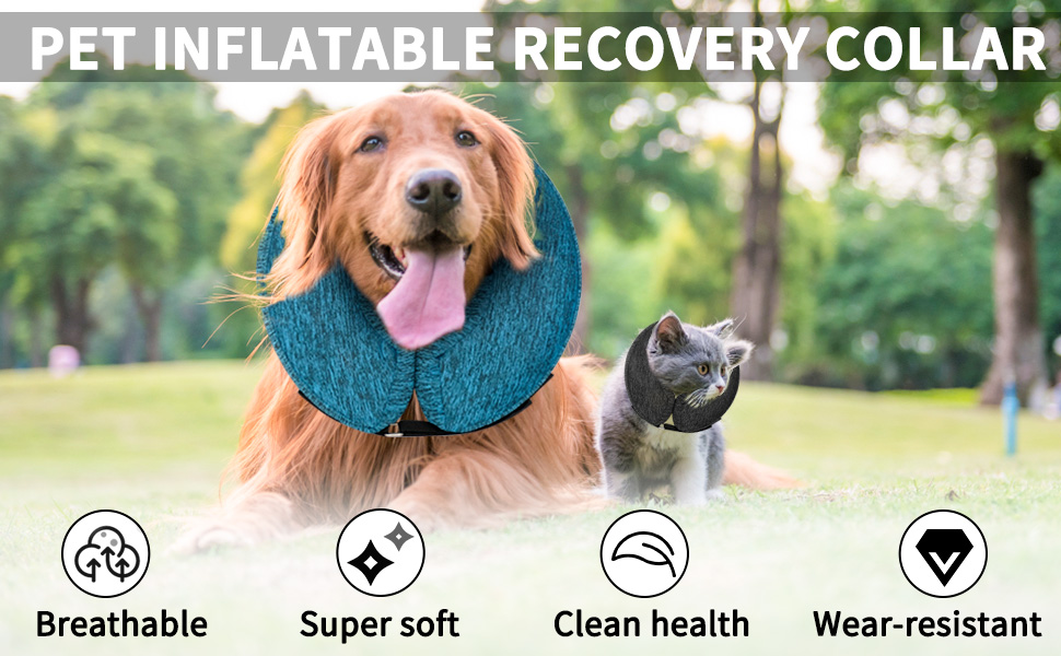 pet inflatable recovery collar