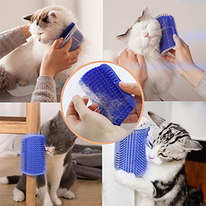 Cat Self Grooming
