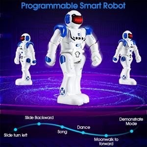Programmable Interactive Smart Robot