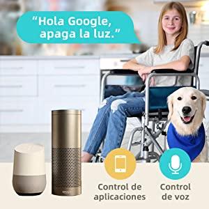 google_voice_enchufe