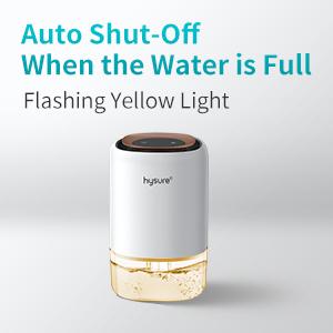 auto shut off dehumidifier