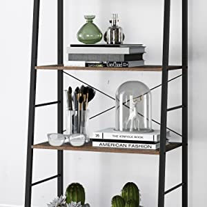 5 Tier Ladder Shelf