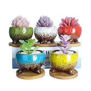 3.9 Inch Succulent Pots