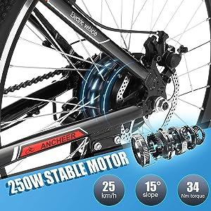 250W motor ebike