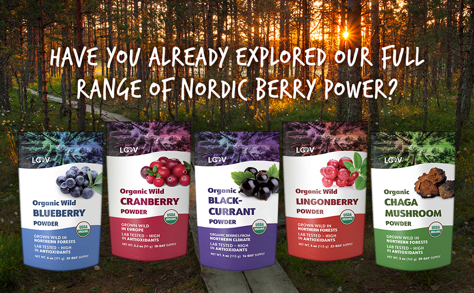 nordic berry powder blueberry cranberry blackcurrant lingonberry chaga