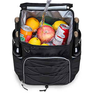 insulated cooler backpack leakproof soft cooler lunch picnic hiking beach park work day trips
