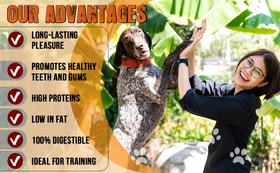 chicken jerky dog treats chews dental fillet training