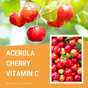 acerola cherry powder organic chewable tablets capsules immune support booster boost best keto pills