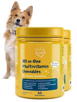 All-In-One Chews