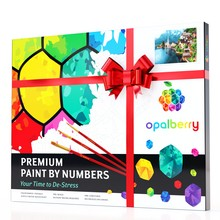 painting paint by number kits for adults