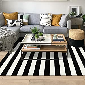 Black and White Rug 2' x 3' Indoor Outdoor Rug Printed