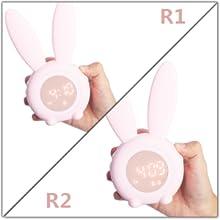 R1/ R2 alarm setting