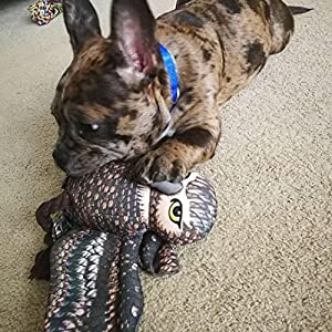dog rope toys for aggressive chewers