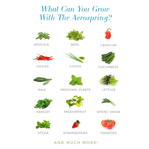 What can you grow?