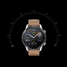honor smartwatch