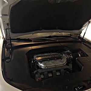 ARANA 2 Pcs Hood Lift Supports Struts Springs Shocks Dampers Compatible with 2005-2010 Chrysler 300 2005-2010 Dodge Challenger//Charger//Magnum 6303 PM1008 SG414051