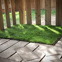 pee pad grass