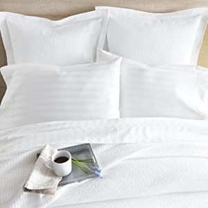 cotton virtuoso sheets peacock alley luxury