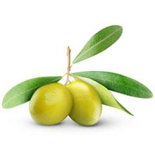 (Olive) Squalane Oil