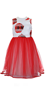 Emma Riley Girls Flower Party Special Occasion Dress