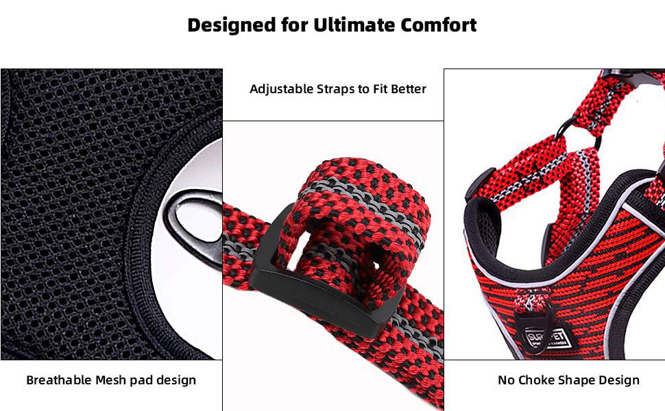 Ultimate Comfort