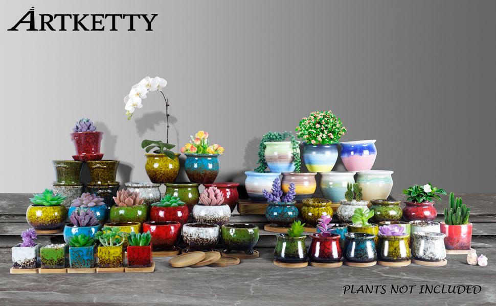artketty succulent pots