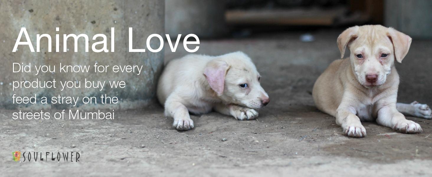 animal friendly cruelty free