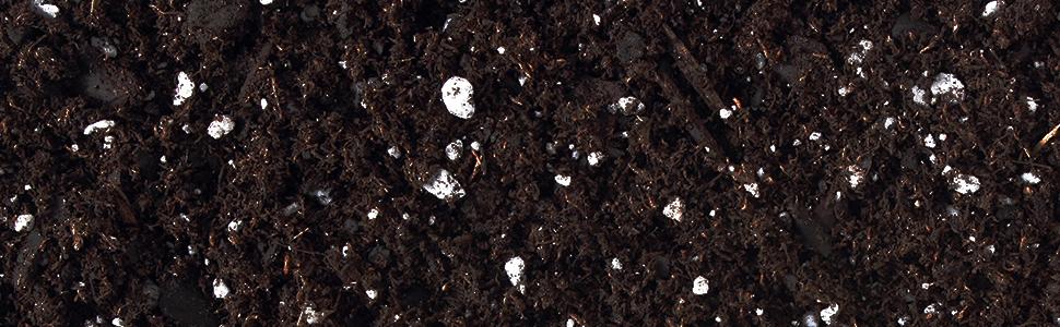 Sprout Island, Organic Seed Soil, Seed Soil, OMRI Seed Soil, Nutrient Fed Seed Soil