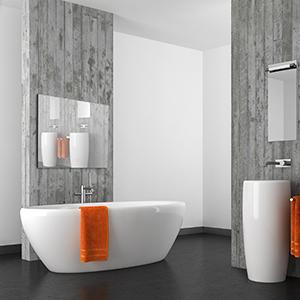 Bathroom TV 1