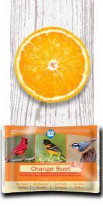 orange bird suet