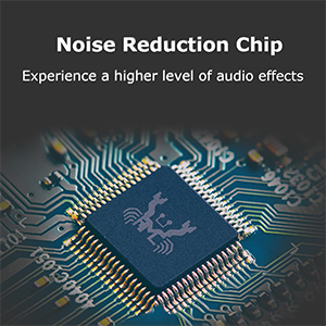 REDUCTION CHIP
