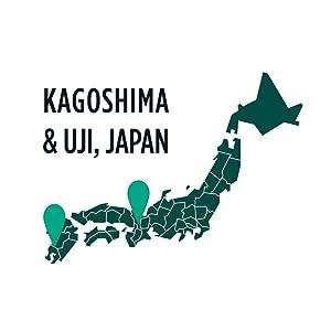 Jade Leaf - Authentic Japanese Origin