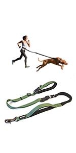 dog leash with 2 handles