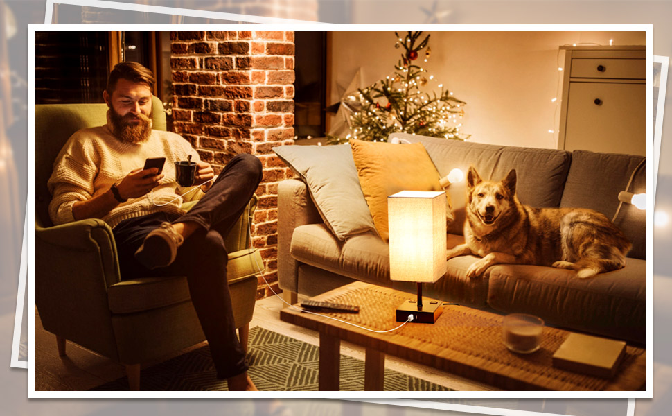 3 way touch control dimmable table lamp grey light usb outlet 6w led edison bulb warm white 2700k